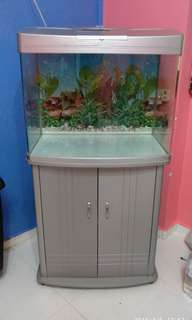 Fish Tank With Cabinet (FREE DELIVERY)