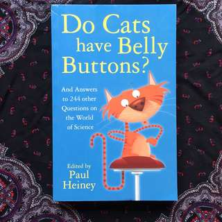 Do Cats Have Belly Buttons?
