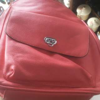 Guccio Leather Bag Pack