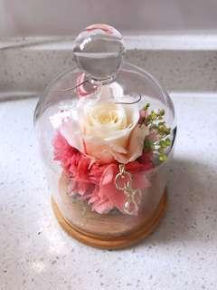 永生花 保鮮花