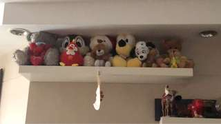 Soft toy for sale