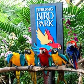 Jurong Bird Park + Free Tram E-Tickets 🦅