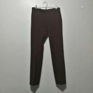 Calypso brown corporate pants