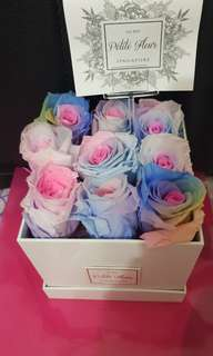 Preserved Pastel Rainbow roses box