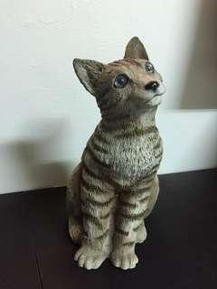 🚚 義大利古董貓