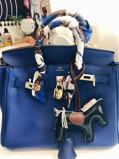 Hermes Birkin 25 Blue Electric Togo Gold Hware