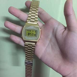 Casio Gold Illuminator
