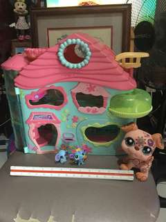 Biggest Littlest Pet Shop House