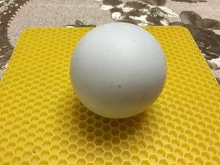 🚚 金鋼舍利 5.5cm