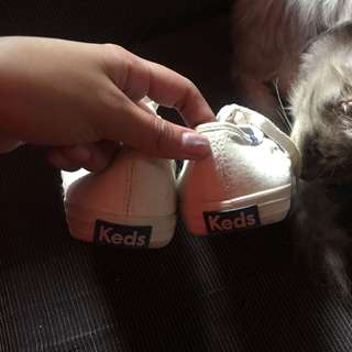 keds canvass white