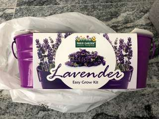 Paris Garden Urban Farming Lavender Grow Kit