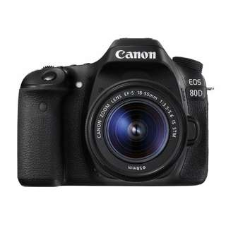 Canon EOS 80D with EF-S 18-55mm Kit Lens