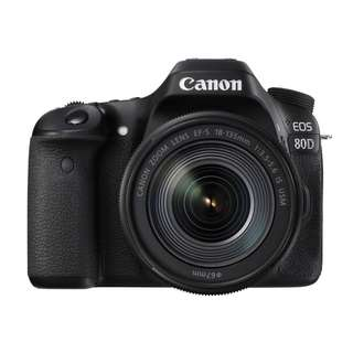 Canon EOS 80D with EF-S 18-135mm Kit Lens