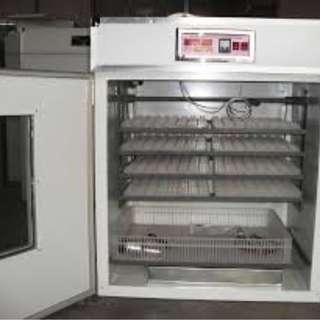 EGG INCUBATOR AND hatcher machine