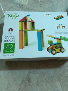42 Piece Tegu Magnetic Educational Wooden Block Set