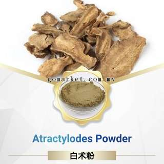 Atractylodes Powder 白术粉