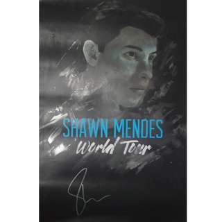 OFFICIAL SHAWN MENDES SIGNED POSTER (limited edition!) ✨