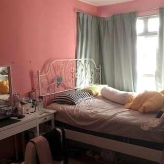 Sengkang room near Buangkok MRT cheap!
