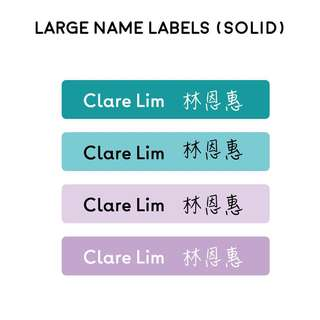 Large Name Stickers in Solid Colour