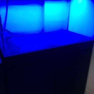 三尺開放缸含底櫃 魚缸