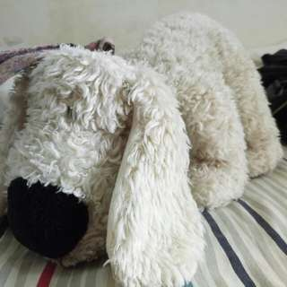 Stuffed toys dog