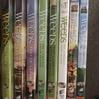 Weeds complete 8 season collection