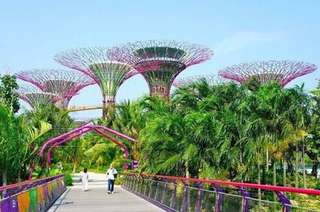 Eticket ADULT GARDEN BY THE BAY SINGAPORE