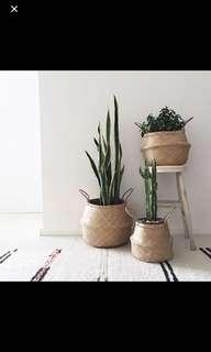 Seagrass woven basket