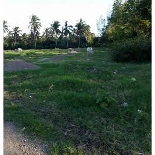 70sqm LOT for SALE