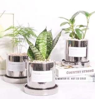 BNIB silver flower pot and base 2-piece set