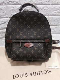 Louis Vuitton Backpack (Can be a sling)