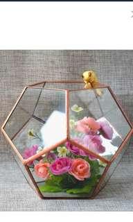 Glass Geometric Terrarium Box Tabletop Succulent Plant Planter 20x20x20cm