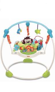 The Fisher Price Precious Planet Jumperoo