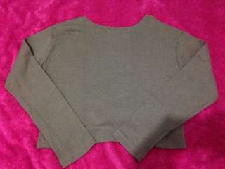 olive green long sleeves (cropped top)