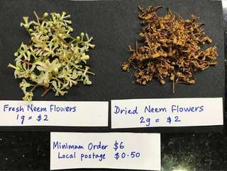 Neem Flowers (sold by weight)