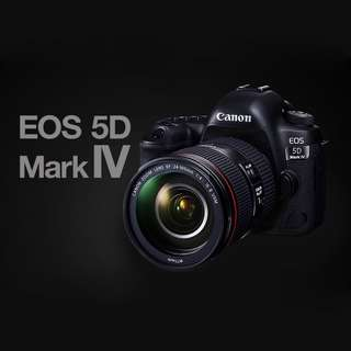 Canon EOS 5D Mark IV with EF 24-105mm f/4L IS II USM