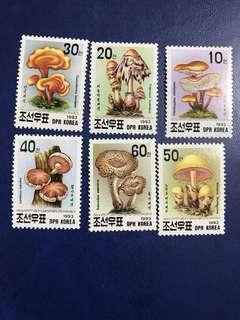 朝鮮1993 蘑菇6全新 郵票