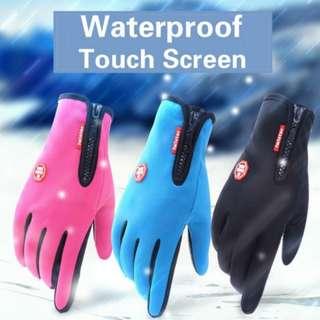 Ski gloves snowboard preorder