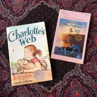 Set of 2 YA fiction