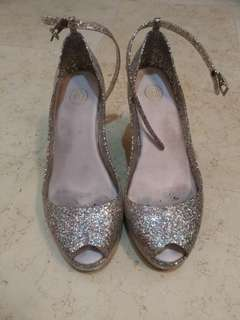 Glitter Silver Wedges