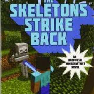 Minecraft Book (SALE !!)