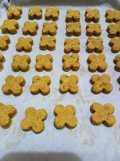 Homemade Pumpkin Spices Oat Coconut oil Cookies for dogs