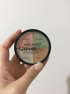 Wet n Wild Cover All Concealer