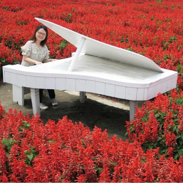 私人教授鋼琴piano tutor