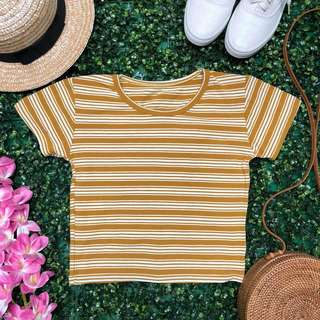 Stripe Shirts (1)
