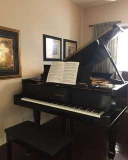 15$ Piano Lessons!