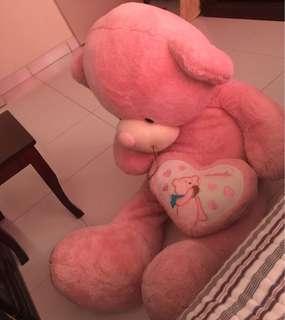 bear besar