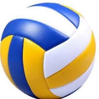 OFFICIAL VOLLEYBALL / BALL JCE