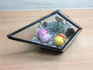 Tsum tsum Airplant Terrarium
