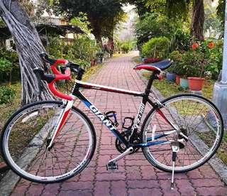 GIANT 捷安特 公路車 腳踏車 R3300